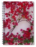 Bougainvillea Of Cascais, Portugal Spiral Notebook