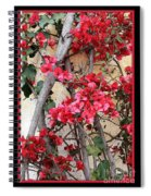Bougainvillea On Mission Wall - Digital Painting Spiral Notebook