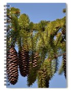 Boughs Of Pine Cones Spiral Notebook