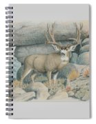 Boulder Buck  Spiral Notebook