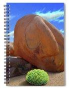 Boulders Spiral Notebook
