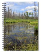 Boundary Waters Beauty Spiral Notebook