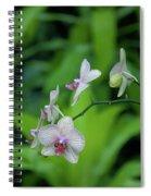 Bowersox Spiral Notebook