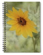 Bowing To The Sun Spiral Notebook