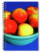 Bowl Of Apples Spiral Notebook