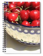 Bowl Of Cherries With Shadow Spiral Notebook