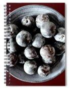 Bowl Of Plums Still Life Spiral Notebook