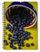 Bowl Pouring Out Blueberries Spiral Notebook