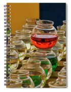 Bowls Full Of Color Spiral Notebook