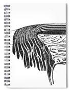 Bowmans Membrane, Retinal Layers, 1842 Spiral Notebook