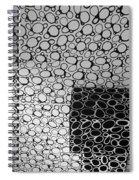 Box  Circles Spiral Notebook