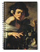 Boy Bitten By A Lizard, 1596 To 97 Spiral Notebook