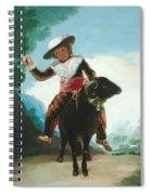Boy On A Ram Spiral Notebook