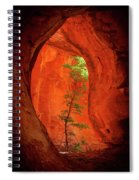Boynton Canyon 04-343 Spiral Notebook