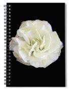 Bp11 Spiral Notebook