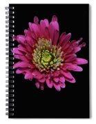 Bp13 Spiral Notebook