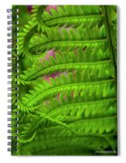 Bracken Fern Spiral Notebook