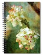 Bradford Pear 8932 Idp_2 Spiral Notebook