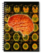 Brain Composite Spiral Notebook