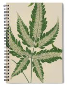 Brake Fern Spiral Notebook