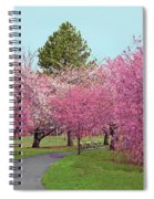 Branch Brook Cherry Blossoms II Spiral Notebook