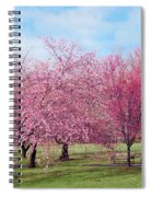 Branch Brook Cherry Blossoms Spiral Notebook