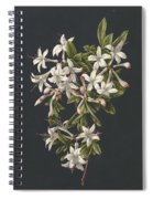 Branch Of A Flowering Azalea, M. De Gijselaar, 1831 Spiral Notebook