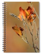 Branch Of Autumn Spiral Notebook