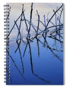 Branch Reflections 484 Spiral Notebook