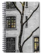 Branches And Windows Spiral Notebook