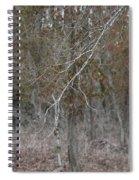 Branches Spiral Notebook