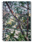Branches Of Light Spiral Notebook