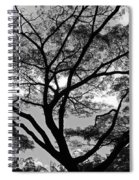 Branching Out In Bw Spiral Notebook