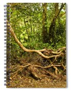 Branching Out In Costa Rica Spiral Notebook