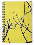Branching Out Snowscape 3 Spiral Notebook