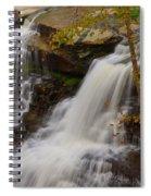 Brandywine Falls II Spiral Notebook