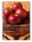 Brass Bowl With Fuji Apples Spiral Notebook
