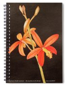Brazilian Red Laelia-miniature Orchid Spiral Notebook