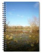 Brazos Bend Winter Wetland Spiral Notebook
