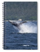 Breaching Whale Paint Spiral Notebook