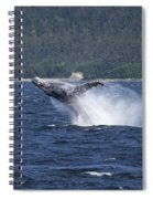 Breaching Whale. Spiral Notebook