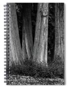Breadth Of Trees Spiral Notebook