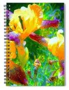 Breakfast Time Oj Irises Spiral Notebook