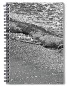 Breaking Wave In Black And White Spiral Notebook