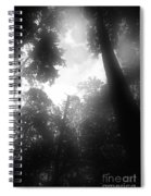 Breathing Trees Spiral Notebook