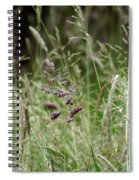 Breezy Summer 2 Spiral Notebook