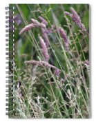 Breezy Summer 3 Spiral Notebook