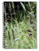 Breezy Summer 4 Spiral Notebook