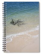 Bribie Branches 2 Spiral Notebook