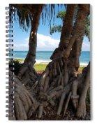 Bribie Trees  Spiral Notebook